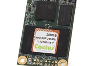 256GB mSATA - 245S pSLC NAND