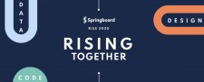 Springboard RISE 2020