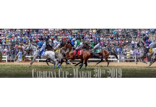 Carolina Cup Horse Race and Soirée in Camden, South Carolina