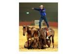 Guy McLean Australian Horseman, Entertainer, & Bush Poet
