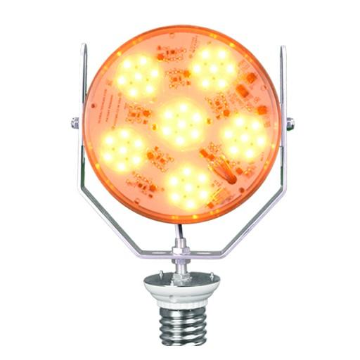 Sea Turtle Season Is Here - Global Tech LED Has Turtle-Safe LED Lighting Retrofits