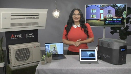 Egypt Sherrod Shares Tips on Making a Home More Sustainable With TipsOnTV