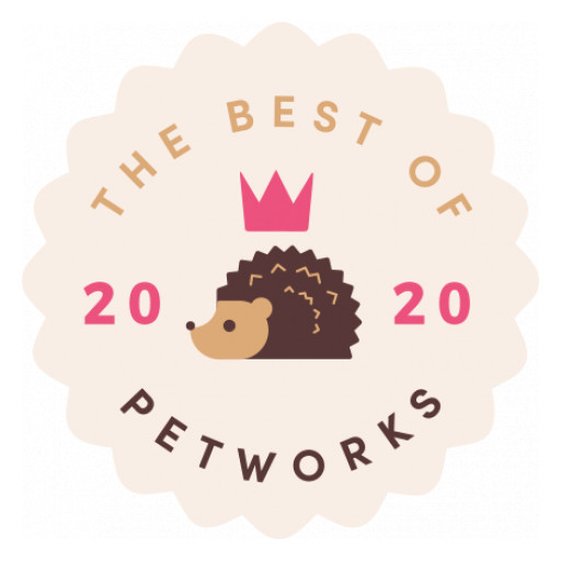 Petworks Reveals Best of 2020 Winners for Top U.S. Pet Care Pros