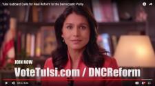 Tulsi Gabbard DNC Reform