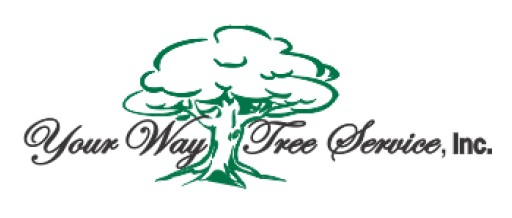 Your Way Tree Service Featured in CalContractor Magazine