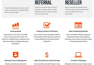 RingLead Premier Partner Program