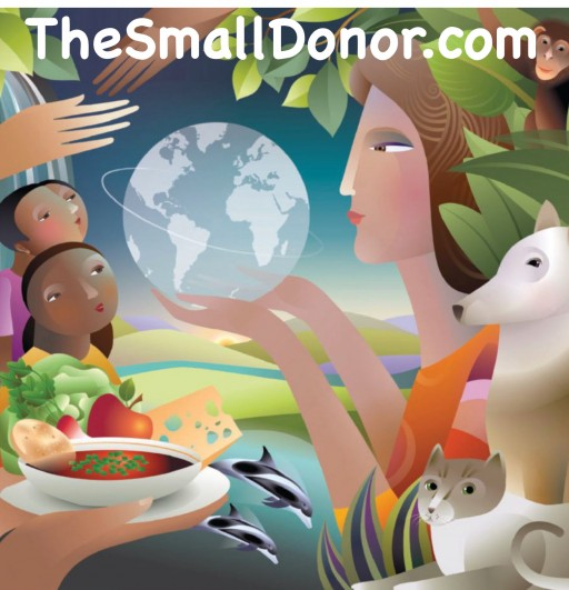 The Good Causes Company Releases TheSmallDonor.com