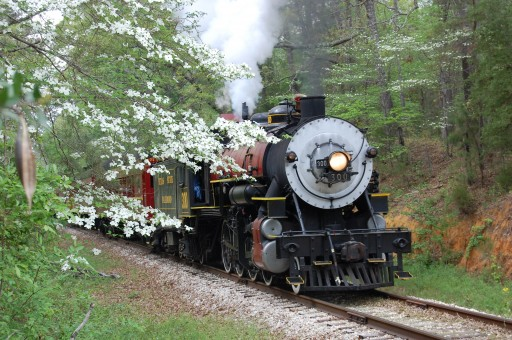 Springtime Arrives at Texas State Railroad