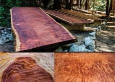 Big Sur Redwood Auction