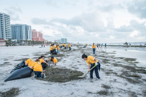 Cleaning Up Clearwater Beach After Hurricane Irma