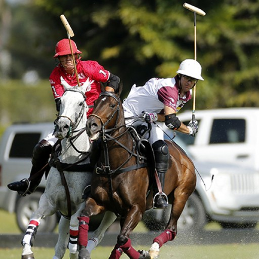 Inaugural Gauntlet of Polo™ Events Begin February 14 in Wellington, Florida