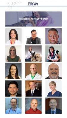 Top Veterinarians Named to ElleVet Advisory Board