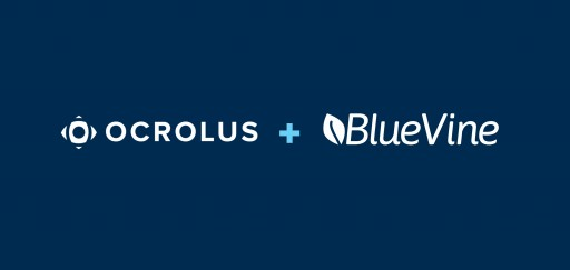BlueVine Partners With Ocrolus for Faster Processing of Financing Applications
