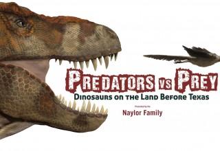 Predators vs Prey