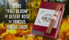 "Rare "" Fall Bloom"" of Desert Rose At Famous Smoke Shop"
