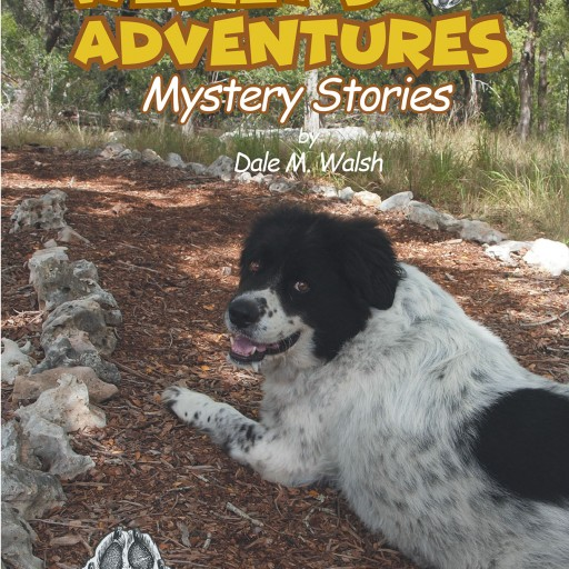 Dale M. Walsh's New Book, 'Wesley's Adventures: Mystery Stories' is an Enjoyable Tale of the Titular Character's Epic and Mysterious Adventures