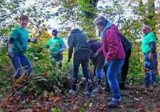 Seattle's Scientology Environmental Task Force and the Seattle chapter of The Way to Happiness Foundation teamed up to keep Kinnear Park beautiful.