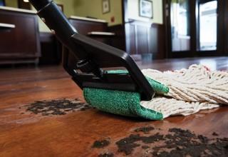 Scrubbing Wet Mop
