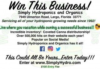 Win This Business
