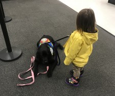 Lisa, an Autism Service Dog, assists Kelani in a department store