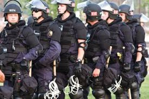 Riot Gear and Crowd Control Requests From Law Enforcement and Government Agencies