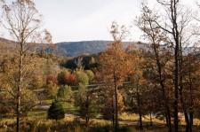 Johnson's Crook's protected landscape