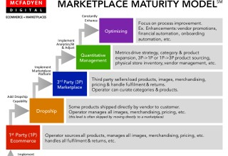 Condensed Marketplace Maturity Model