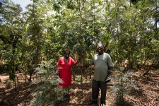 Davis Mukolwe, a smallholder client of One Acre Fund