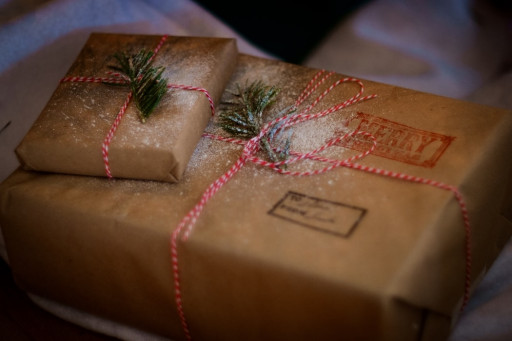 Grieving Families of Seniors Lost in Nursing Homes Start Initiative to Bless Other Nursing Home Residents This Christmas