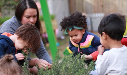 Building a Foundation for Learning With Natural Nutrition