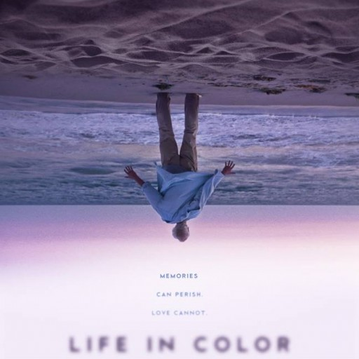 From Cannes to Prime, LIFE IN COLOR Comes Home