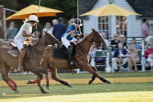RealEstateAuction.com Announces Landmark Saratoga Polo Whitney Field Property Auction