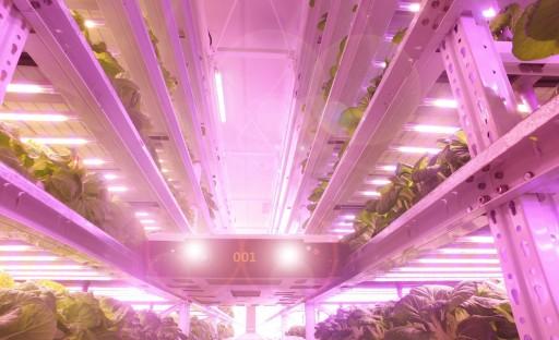 Indoor Farming Technology Leader SANANBIO® Debuts UPLIFT™ Vertical Farming System