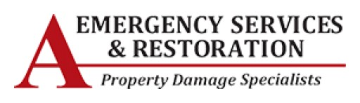 Professional Fire Damage Restoration Niles Makes It Simple to Start Afresh