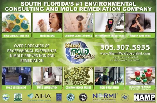 Miami Mold Specialists Launches Anti-AOB Insurance Claim Abuse Initiative