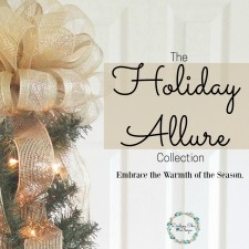 The Holiday Allure Collection