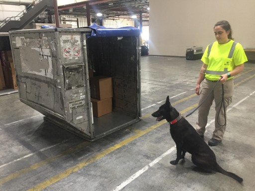 GK9PG is the First Company Certified by the TSA to Provide CCSF-K9 Services.