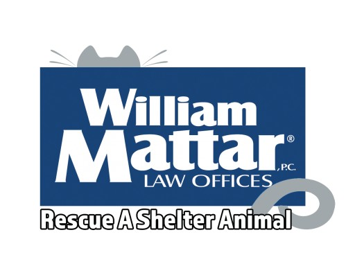 New York Car Accident Attorney William Mattar Hosts Pet Photo Contest During Rescue a Shelter Animal Campaign
