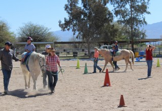 Therapeutic riding exercises