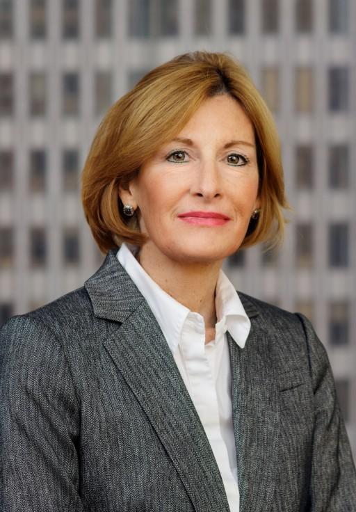 Deborah Monteith Neubert Presents for Design Professionals on Private and Public Entities