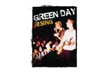 Green Day Rising: Before the Dookie Flew