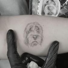 Realistic Dog Portrait Tattoo