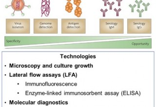 """Figure 1: summary of technologies to detect infectious disease Source: IDTechEx report """"Molecular Diagnostics 2020-2030"""""""