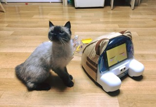 Live Communication with Your Pet!