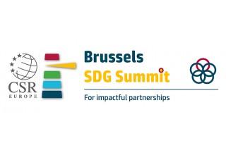 Brussels SDG Summit 2018 logo