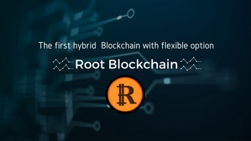 Root Blockchain-the First Hybrid Blockchain With Flexible Option