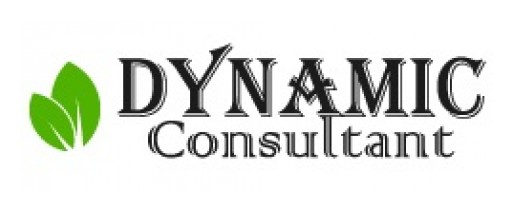 Contact Dynamic Consultant for Top Level SEO and Web Development Services