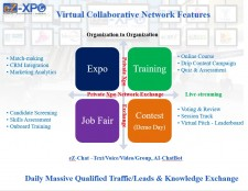Virtual Collaborative Network Features