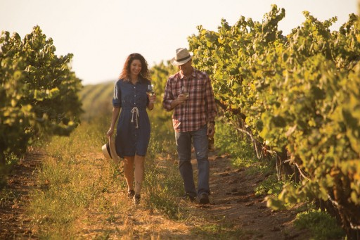 Road Trip to Santa Maria Valley for a $500 Wine Country Getaway