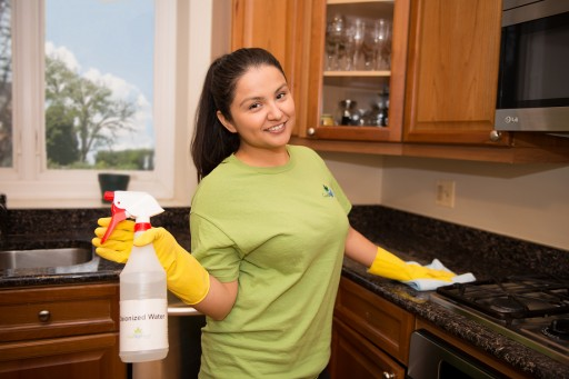 Fresh Tech Maid Releases a Free Spring Cleaning Ebook to Help People Wipe Away Germs